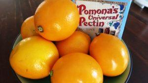 Meyer lemons and box of pectin